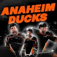 Billet Ducks d'Anaheim