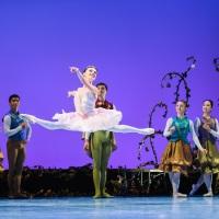 Billet Ballet Jörgen