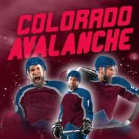 Billet Avalanche du Colorado