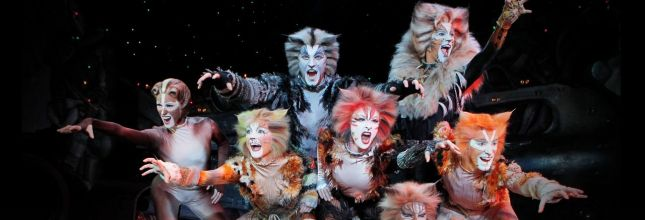 Cats Montreal 2020 ticket -  8 August 20h00