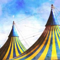 Buy your Cirque du Soleil Nouveau Spectacle 2020 tickets