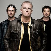 Billet Glass Tiger