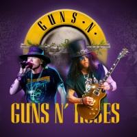 Billet Guns N' Roses