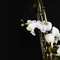 Billet Ottawa Symphony Orchestra