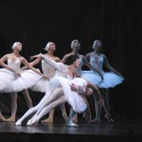 Buy your Swan Lake tickets