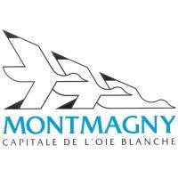 Billet Montmagny concert